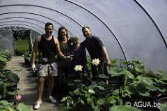 Seerosenfarm, Lotusland