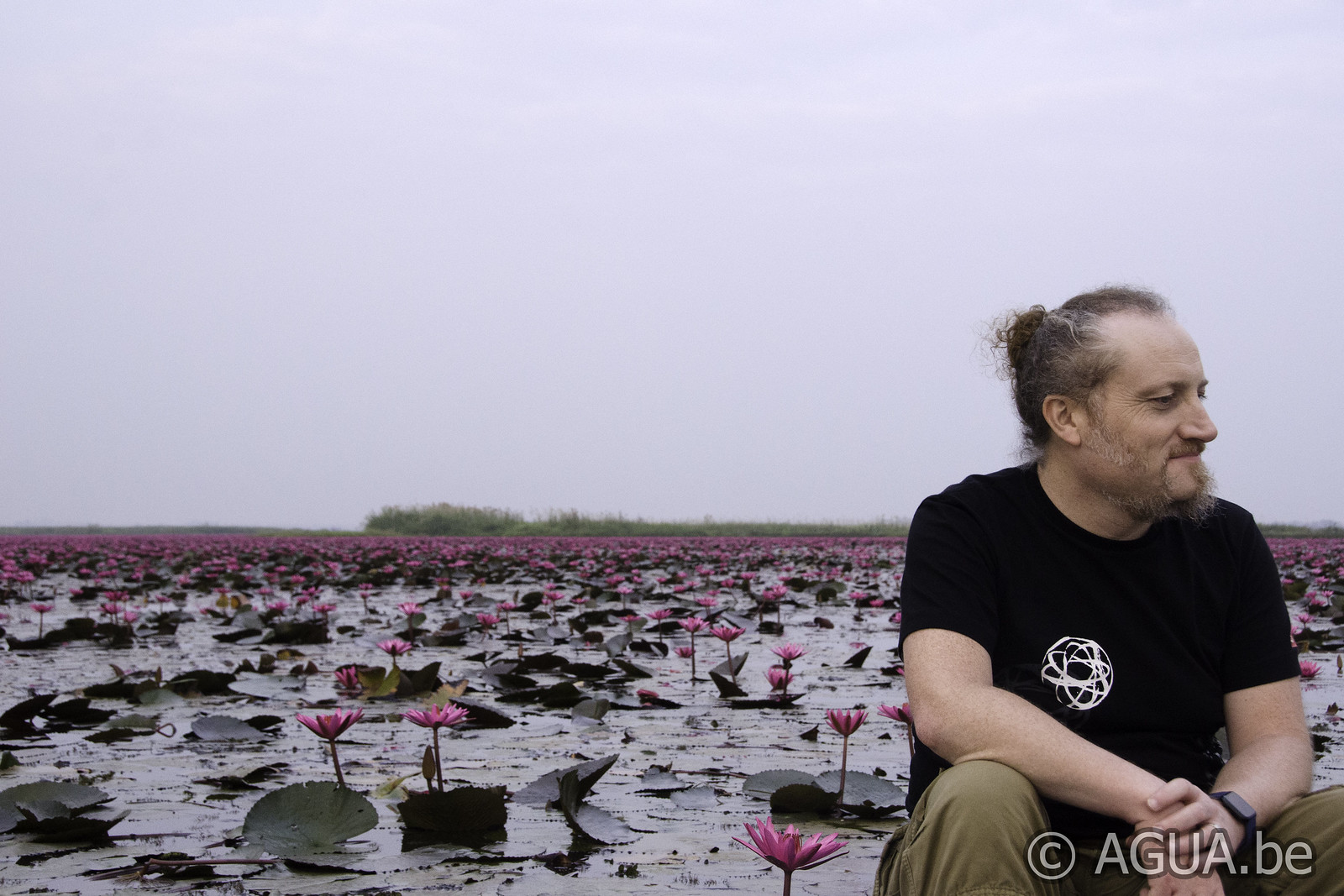 Red Lotus Sea