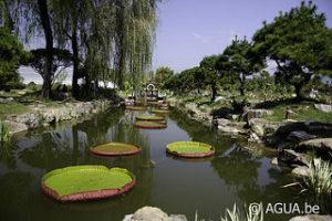 Semiwon Botanical Garden