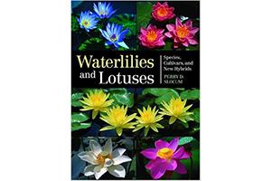 Waterlilies&Lotuses